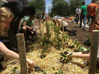 UT students working at the Concho Community Garden