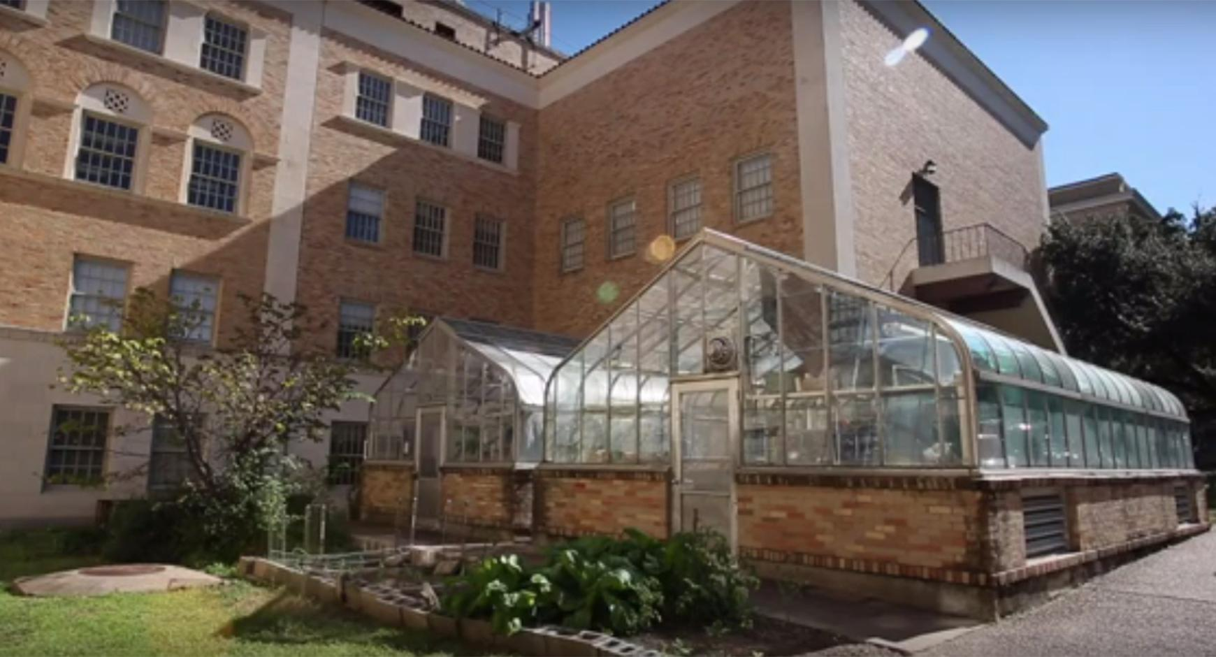Painter Greenhouse