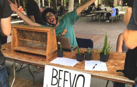 Beevo tabling