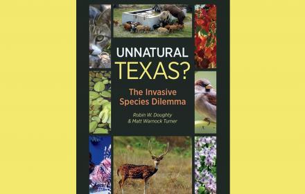 Unnatural Texas book