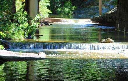 Waller Creek during Clean Up