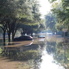 Cars floating in Houston